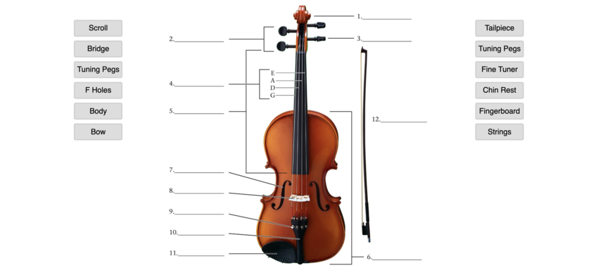 Name the Parts of the Violin