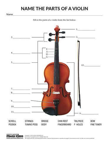 Name the Parts of the Violin - Activity Page